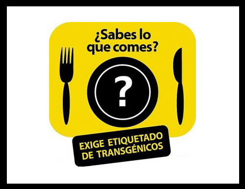Lista de alimentos transgénicos en México 2021